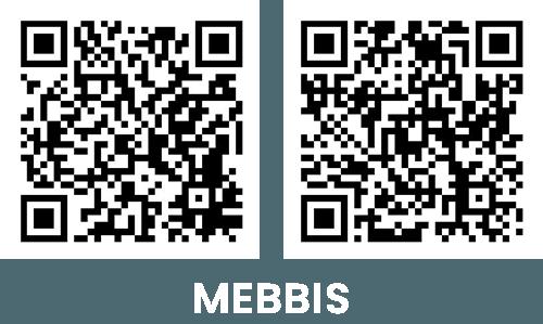 mebbis